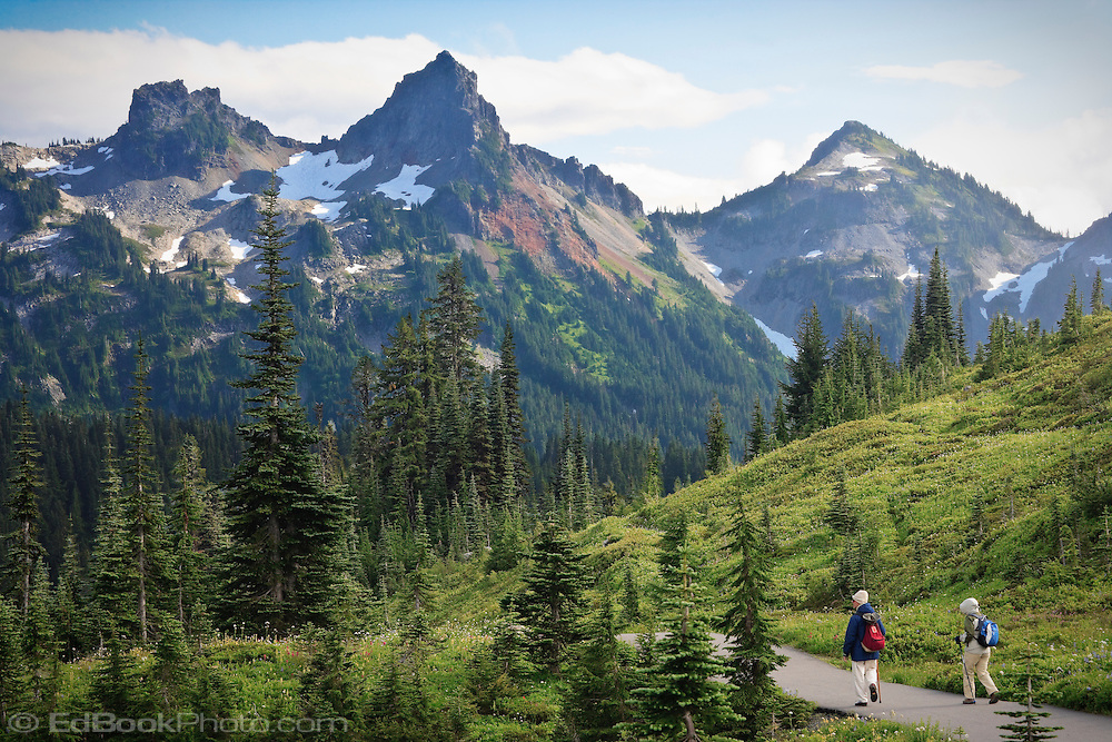 Two hikers in Paradise Meadows looking at the Tatoosh Range, Mount Rainier National Park, WA, USA