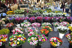 Flower stall, Market, Place aux Herbes, Uzes, Gard, Southern France 2021