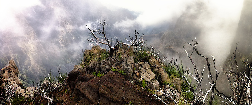 We all have a spot we consider the most wild place we've visited.  For me, it's this spot near the highest peak on Madeira.  Hours of hiking high ridge trails, sometimes through mist, around steep ledges, left me feeling exhausted but accomplished in a feat I'd never before achieved.