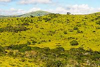 Landscape in Hluhluwe-Umfolozi Game Reserve, South Africa.