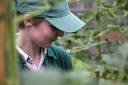 Woman with learning disability at work at Brook Farm; Linby,