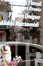 Vetrina di un negozio di fiori, situato nel centro cittadino, con la scritta della tipologia merceologica. Sul vetro è riflesso uno scorcio della via che si trova di fronte al negozio.