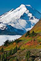 Fall; Mt. Baker Wilderness Area; North Cascades; WA; Yellow Aster Butte