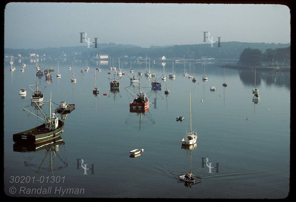 Boats moored on Crach Rivr in the Morbihan, morning; note red and green oyster dredge boats. France