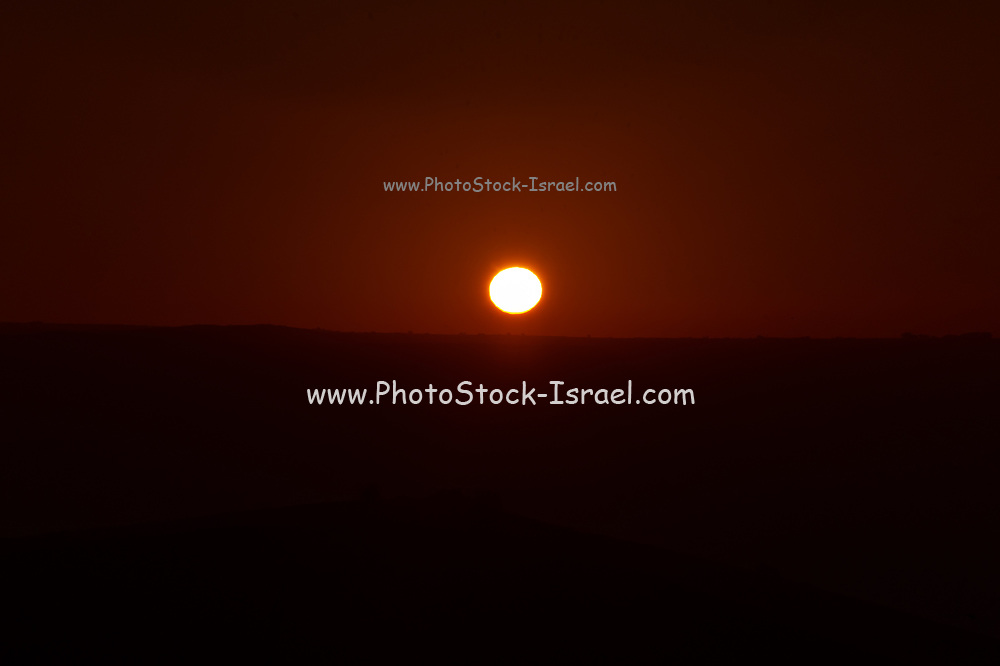 A golden sun-set. Photographed in the Hula Valley, Israel,