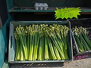 Daffodils for sale at a farm gate on 9th April 2020 in Cowbit, Lincolnshire, United Kingdom.