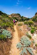 Hiker in Lobo Canyon, Santa Rosa Island, Channel Islands National Park, California USA