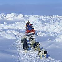 INTERNATIONAL ARCTIC PROJECT, Will Steger mushes across frozen Arctic Ocean