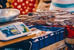 THEMENBILD - Fischmarkt in Rijeka, aufgenommen am 13. August 2019 in Rijeka, Kroatien // fish market in Rijeka, Croatia on 2019/08/13. EXPA Pictures © 2019, PhotoCredit: EXPA/Stefanie Oberhauser