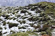 Mossy Lava Field near Kirkjubaejarklaustur, southern Iceland