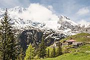 Kerzenhotel Obersteinberg oben Stechelberg. In Hintergrund Gspaltenhorn