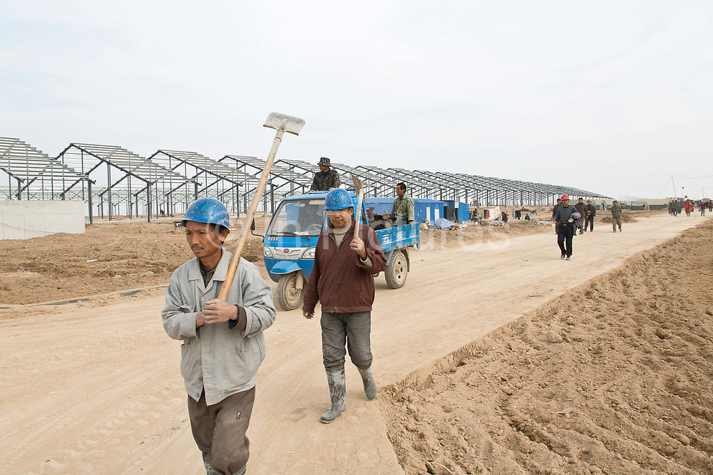 Workers operate to construct the No. 4 dairy farm of Austaisa in Dongying, Shandong Province, China on 31 October, 2013. By the end of 2014, the pan-Asian diary group will have invested more than $US300 million in China and have around 55,000 cattle in its herd. The rapidly increasing dairy demand from China is pushing global prices higher, especially after food safety scandals have wrecked consumer confidence in local Chinese producers, spelling ample opportunity for global producers.