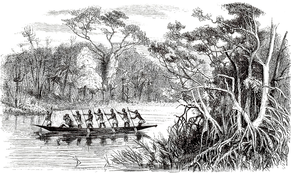River Scenery on the West Coast From the Book ' Missionary travels and researches in South Africa ' including Sixteen Years Residence in the Interior of Africa. by Dr. David Livingstone Published in New York by Harper & Brothers 1858