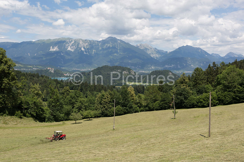 With Lake Bled and distant mountains of the Slovenian Alps and Austria further away, local farmer rakes grass on a hillside meadow, on 18th June 2018, in Kupljenik, Slovenia.