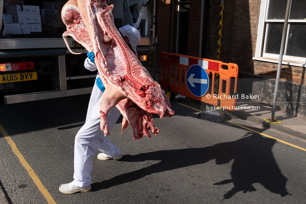 A meat industry worker delivers pork carcasses to a local butchers, on 10th August 2020, in Aylsham, Norfolk, England.