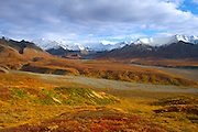 The tundra of Denali National Park, peaks of the Alaska Range in the background.