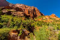 Taylor Creek Trail, Kolob Canyon, Zion National Park, Utah USA.