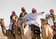 Camel and arab rider in Riyadh, Saudi Arabia