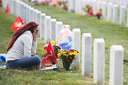 November 11, 2016 - Arlington, VA, United States of America - Dawn Clarke visits the grave of her brother, U.S Marine Lance Cpl. Terry E. Honeycutt during Veterans Day at  Arlington National Cemetery November 11, 2016 in Arlington, Virginia. Honeycutt is buried in Section 60 for veterans of the wars in Afghanistan and Iraq. (Credit Image: © Rachel Larue/Planet Pix via ZUMA Wire)