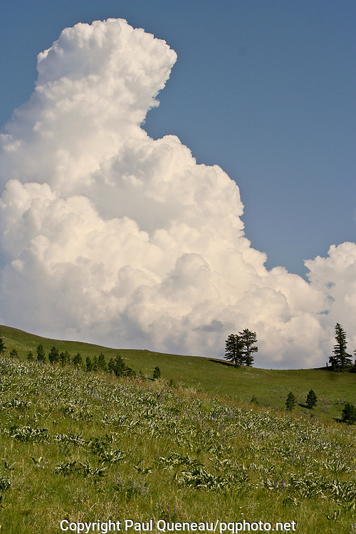 A stately cumulonimbus reaches the stratosphere above the National Bison Range in Western Montana.