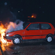 Autobranden Slangekruid