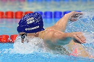 Siobhan-Marie O'Connor of Great Britain on her way to a team Gold Medal in the 4 x 100m Medley during day 14 of the 33rd  LEN European Aquatics Championship Swimming Finals 2016 at the London Aquatics Centre, London, United Kingdom on 22nd May 2016. Photo by Martin Cole.