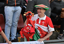 June 16, 2018 - Santa Fe, Argentina - Welsh fans cheer for their team during the International Test Match between Argentina and Wales at the Brigadier Estanislao Lopez Stadium, on June 16, 2018 in Sante Fe, Argentina. (Credit Image: © Javier Escobar/NurPhoto via ZUMA Press)