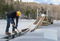 John J guides ice blocks up the chute during the Rockywold-Deephaven Camp annual ice harvest on Wednesday morning.  (Karen Bobotas/for the Laconia Daily Sun)