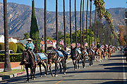 "On November 11, 2013, a Veterans Day mule train parade in Glendale, California that is the last leg of a commemorative artist action called ""One Hundred Mules Walking the Los Angeles Aqueduct"", which was a month long, 240 mile journey from Owens Valley to Los Angeles that commemorates the 100 year anniversary of the opening of the Los Angeles Aqueduct. The action was created by Lauren Bon and Metabolic Studio with support from the Los Angeles Department of Water and Power (LADWP) and traversed the route of pipelines and canals that bring water from the Eastern Sierras through a gravity-fed system to Los Angeles, and which originally used mules to haul the equipment and pipes."