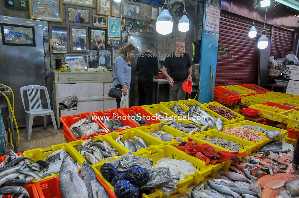 Israel, western Galilee, Acre, The Old City market fresh fish stand