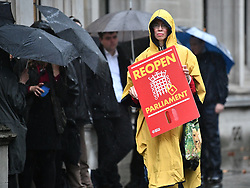 © Licensed to London News Pictures. 24/09/2019. London, UK. Pro EU Protestors gather at the The Supreme Court in London where a verdict is expected on an appeal against a judicial review of Boris Johnson's suspension of Parliament. The case has been brought by remain campaigner Gina Miller, with support from former British Prime Minister John Major. Photo credit: Ben Cawthra/LNP