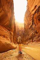 A lone backpacker enjoys the view while hiking through the Paria Canyon in the Paria-Vermillion Cliffs Wilderness area, Arizona.