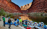 """Sunrise light spotlights a wall in Marble Canyon on day 2 of 16, where we breakfasted at Twentymile Camp at Colorado River Mile 20.2 in Grand Canyon National Park, Arizona, USA. Marble Canyon runs from Lees Ferry at River Mile 0 to the confluence with the Little Colorado River at Mile 62, which marks the beginning of the Grand Canyon. Although John Wesley Powell knew that no marble was found here when he named Marble Canyon, he thought the polished limestone looked like marble. In his words, """"The limestone of the canyon is often polished, and makes a beautiful marble. Sometimes the rocks are of many colors – white, gray, pink, and purple, with saffron tints."""" Multiple overlapping photos were stitched to make this panorama. For this photo's licensing options, please inquire at PhotoSeek.com. ."""