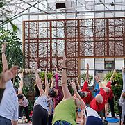 20200112 Greenhouse Yoga