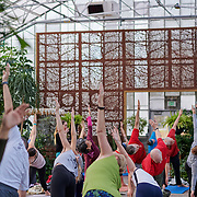 20200112 Greenhouse Yoga jpg1