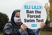 A PETA supporter protests outside Eli Lilly's R&D centre to call on the US pharmaceutical company to ban the forced swim test on 29 October 2020 in Bracknell, United Kingdom. Animal rights charity PETA UK contends that the forced swim test during which small animals are dosed with an anti-depressant drug, placed in inescapable beakers filled with water and forced to swim to keep from drowning has been widely discredited and that other pharmaceutical companies including Johnson & Johnson, GlaxoSmithKline, Pfizer, Bayer, Roche and AstraZeneca have banned it.