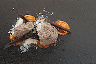 Coals of malted mousse with black bread and buttermilk