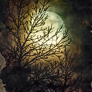 Supermoon seen on November 14, 2016 at Retzer Nature Center in Wisconsin.