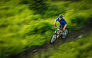 SHOT 8/5/17 6:18:08 AM - Nick Jones of Cedar City, Utah pedals through a section of trail at the Mountain Bike Park at Brian Head Resort early one morning. With its combined chairlift and shuttle service Brian Head gives riders access to more than 100 miles of the most scenic and exhilarating mountain bike trails in the country. (Photo by Marc Piscotty / © 2017)