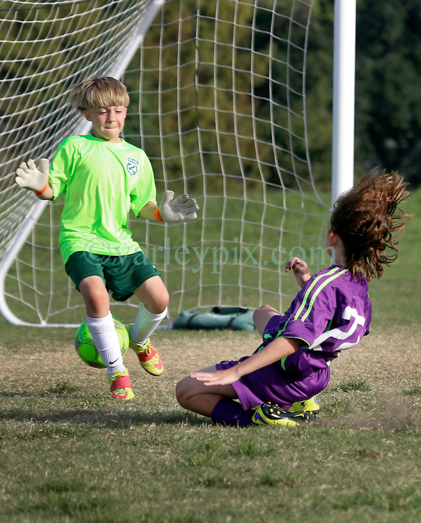 15 November 2015. New Orleans, Louisiana.<br /> New Orleans Jesters Youth Academy play Slidell.<br /> Jesters U10 Green vs U11 Kaos. Jesters emerge victorious.<br /> Photo©; Charlie Varley/varleypix.com