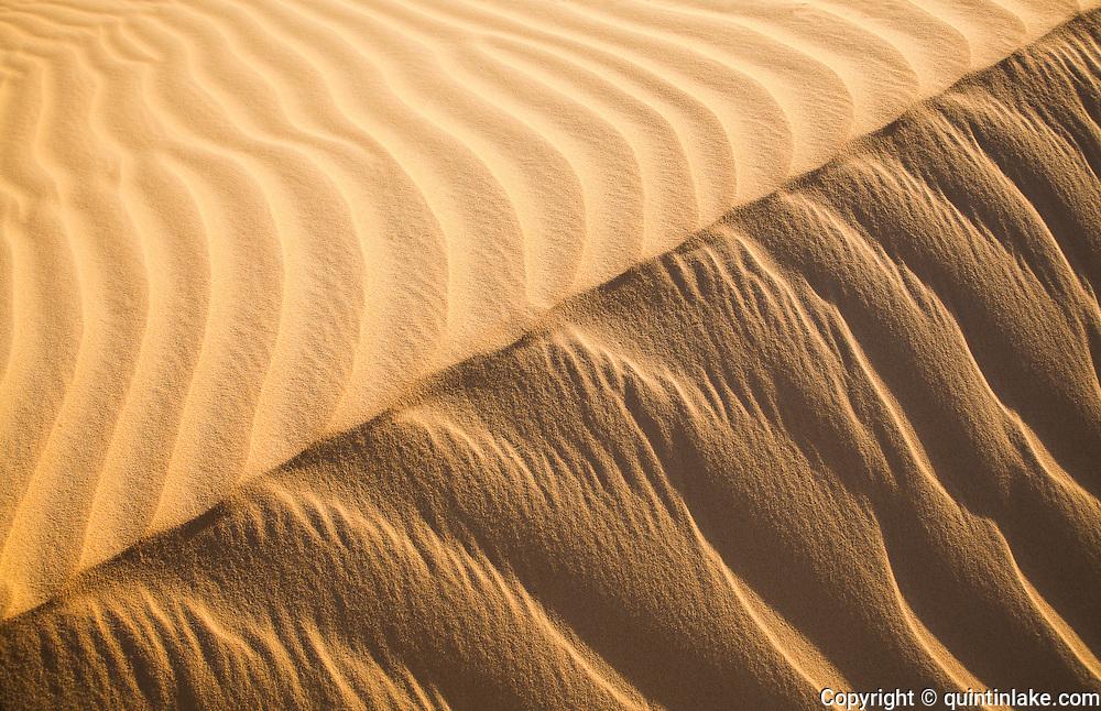 Early morning sunlight illuminates a sand dune Western Desert, Egypt