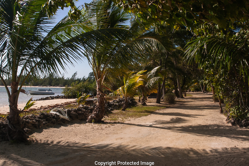 Small Hope Bay Lodge was Bahamas' first dive resort, near Fresh Creek. It opened in 1960.
