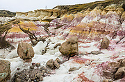 Paint Mines Interpretive Park is run by El Paso County, near Calhan, Colorado. Its colorful sediments outwashed from the Rockies 55 million years ago. The Paint Mines are named for their colorful clays that were collected by American Indians to make paint. Oxidized iron compounds cause brightly colored bands in various layers of clay. When outcrops erode, a hard capstone allows columns of clay to be preserved beneath, creating fantastic spires called hoodoos. Selenite (gypsum) contributes to the color, and white quartzitic crystals dazzle the eye.