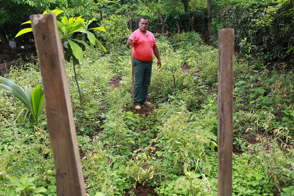 """Pastor, Adan García Díaz, pastor of the Nazareno Church in El Tigre, Carazo, Nicaragua.<br /> <br /> """"We're here, thanks be to God, and we are blessed by CIEETS and CWS with this project. It's a blessing for us, for El Tigre, San Gregorio, Los Ranchos, San Vicente, San Antonio, all of us here. God willing, we'll continue this work for the benefit of everyone. We are getting big changes in the weather, the climate, the rain is irregular. CIEETS has helped us a lot to adapt to the changes, we can't rely on the sort of agriculture that we used to rely on."""""""