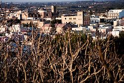 Veduta di Alessano da un'altra angolazione, con la cima di alcuni alberi ancora spogli