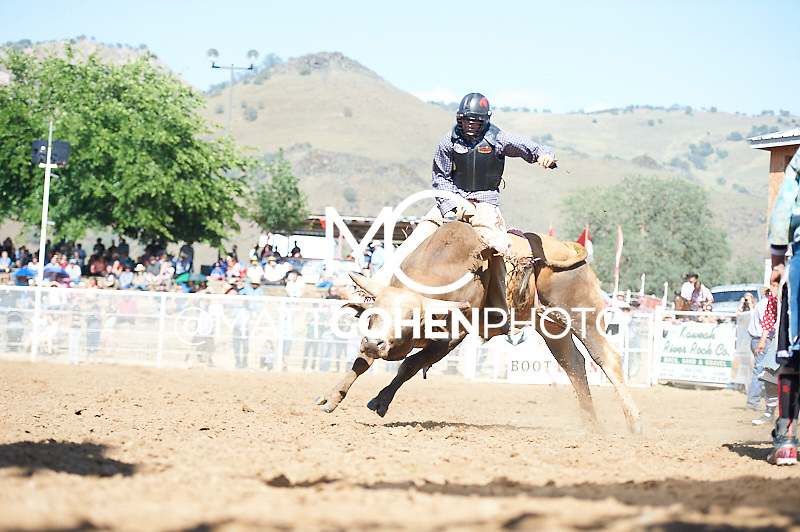 Bull rider Bryan Richard Carter of Pendleton, OR rides MJ Dos Mass at the Woodlake Lions Rodeo.<br /> <br /> <br /> UNEDITED LOW-RES PREVIEW<br /> <br /> <br /> File shown may be an unedited low resolution version used as a proof only. All prints are 100% guaranteed for quality. Sizes 8x10+ come with a version for personal social media. I am currently not selling downloads for commercial/brand use.