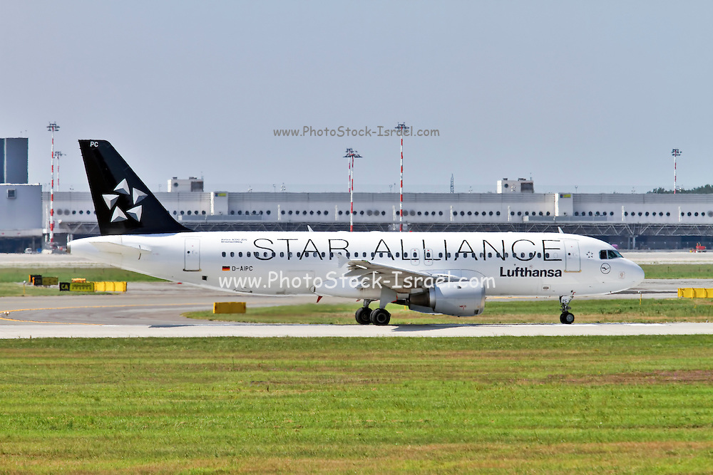 Lufthansa star alliance Airbus A320 at Milan - Malpensa (MXP / LIMC) Italy