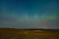 The strongest geomagnetic storm (G3) of 2018 brought the aurora down to lower latitudes. I wasn't expecting much with hazy skies and a full moon working against me. But I had to try shooting it, since opportunities to see the aurora have been exceedingly rare as the sun heads deeper into solar minimum. And to my surprise a faint green band of light was visible to my eyes, which ended my 9-month streak since I last saw the northern lights. There are several north-facing locations nearby that I keep in the back of my mind, waiting for nights like this one. This two-track road is just over the stateline in Montana. Strange noises filled the night air including crickets chirping, sandhill cranes calling, and coyotes howling. Even though the moonlight drowned out much of the aurora, it did help with lighting up the landscape for photos.