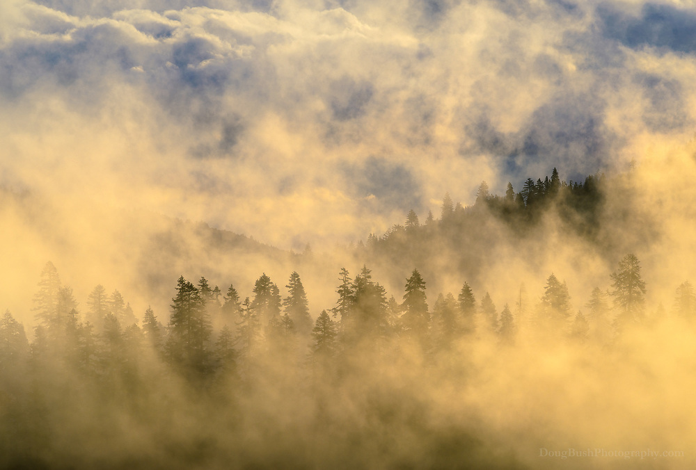 Clearing storm at sunrise, Mount Linn. Yolla Bolly Middle Eel Wilderness.