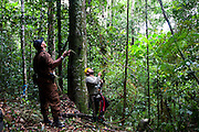 Parauapebas_PA, Brasil...Floresta Nacional de Carajas. Pesquisadores trabalhando em meio a floresta amazonica...The Carajas National forest. The researchers working in the Amazon rain forest.. .Foto: JOAO MARCOS ROSA / NITRO